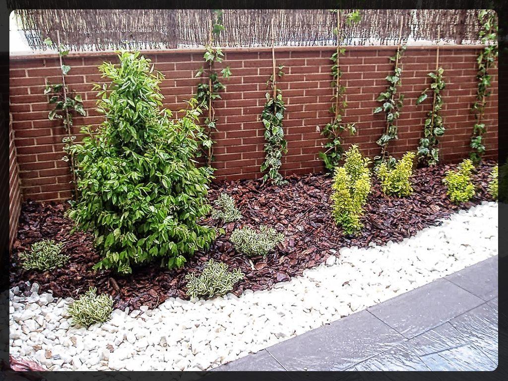 Diseño de jardín minimalista