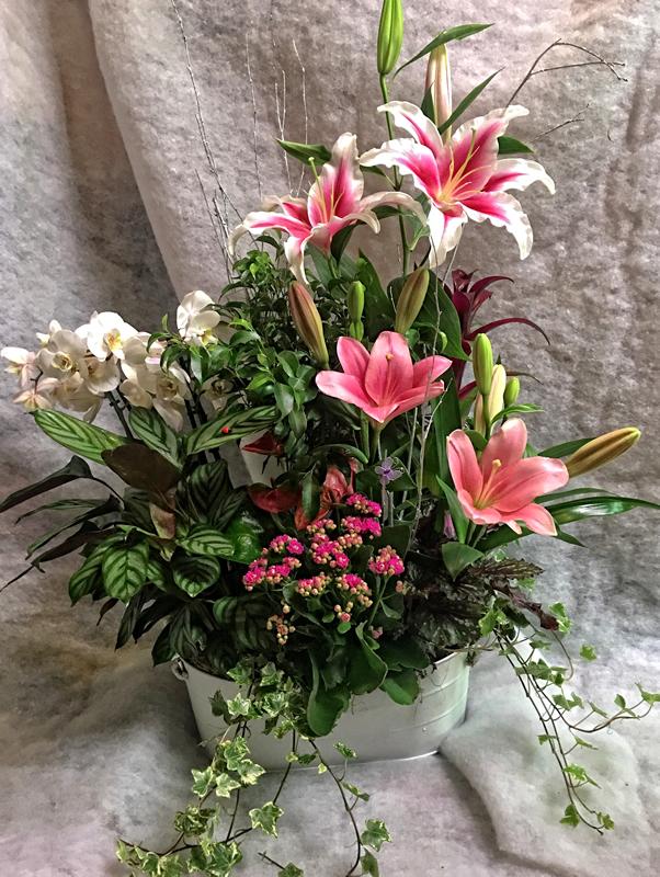 Combinación planta natural y flor cortada 85€