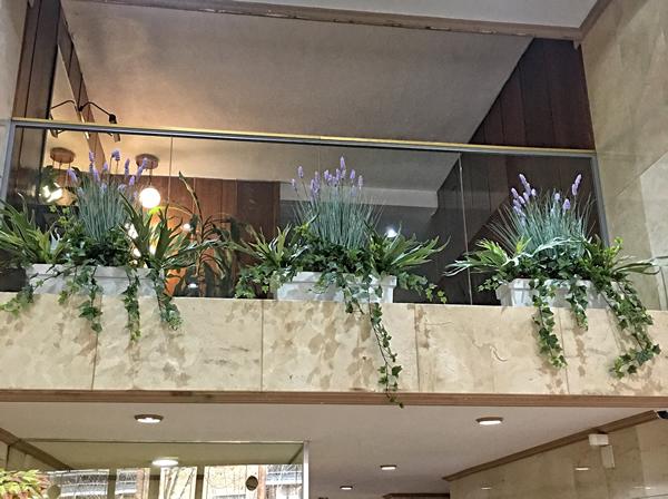 Decoración plantas portal